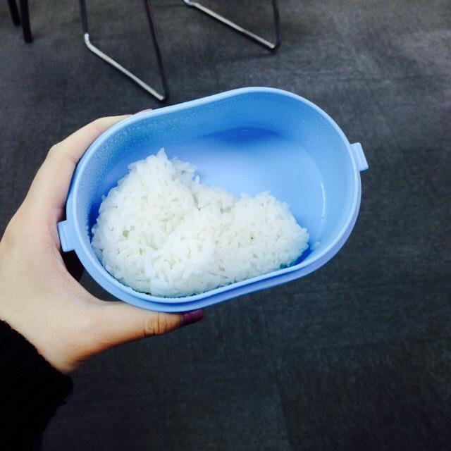 小藍便當盒變成我每日的營養來源